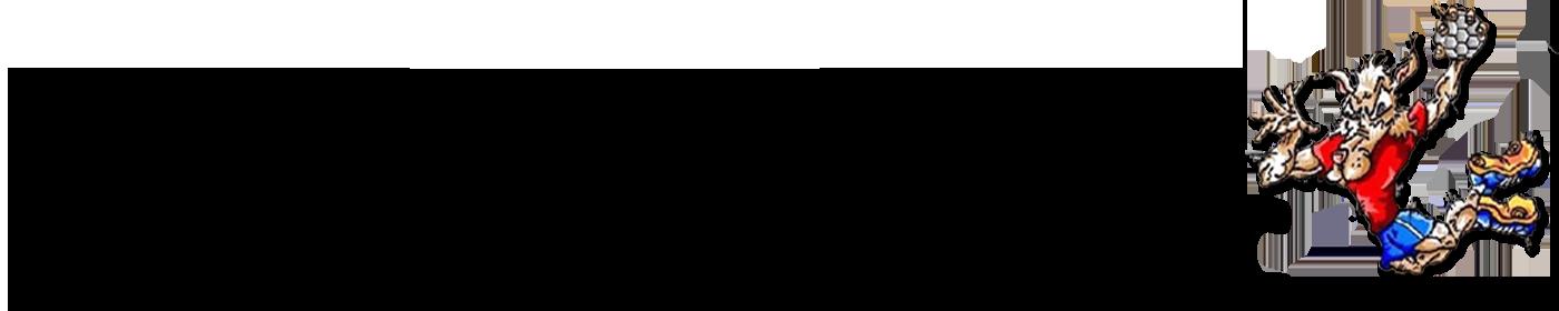 Balonmano Morro Jable VC